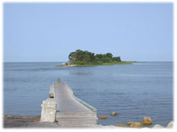 Island off of the coast of Yankeetown.